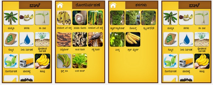 banana-app